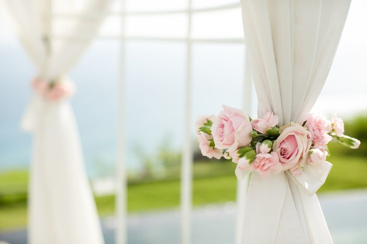 Canopy in Blush Pink