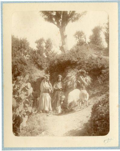 Geiser. Algérie, Laboureurs arabes Vintage albumen print. Tirage albuminé