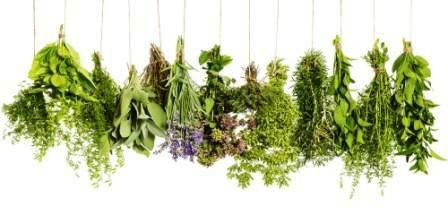 http://blog.biostop.ro/wp-content/uploads/2016/05/o-COOKING-WITH-HERBS-facebook.jpg