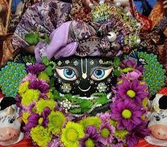 Image result for shaligram.com