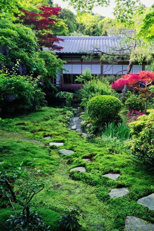 Les 25 meilleures id es de la cat gorie jardin ombrag sur for Jardin ombre
