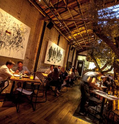 Best Seafood Restaurants In Mission Beach San Diego