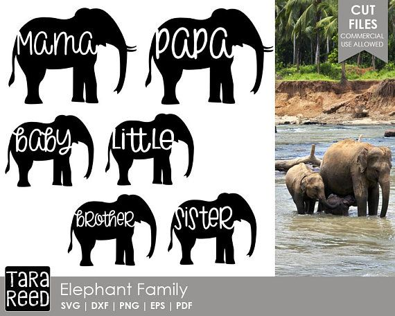 30+ Elephant Mama And Baby ~ Cut File Crafter Files