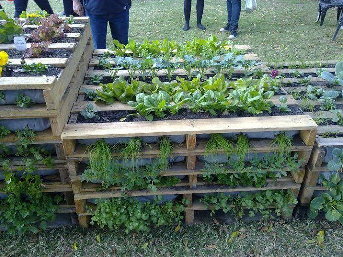 Vrt s povrćem od paleta - domidizajn.jutarnji.hr