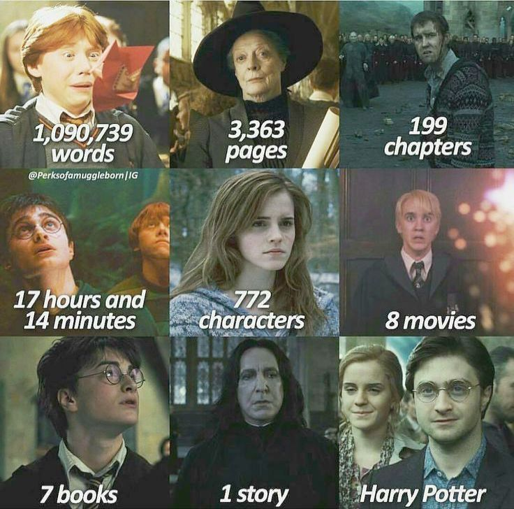 Harry Potter Characters Dudley A Harry Potter Memes On The Train If Harry Potter Funny Memes Harry Potter Voldemort Harry Potter Jokes Harry Potter Fanfiction