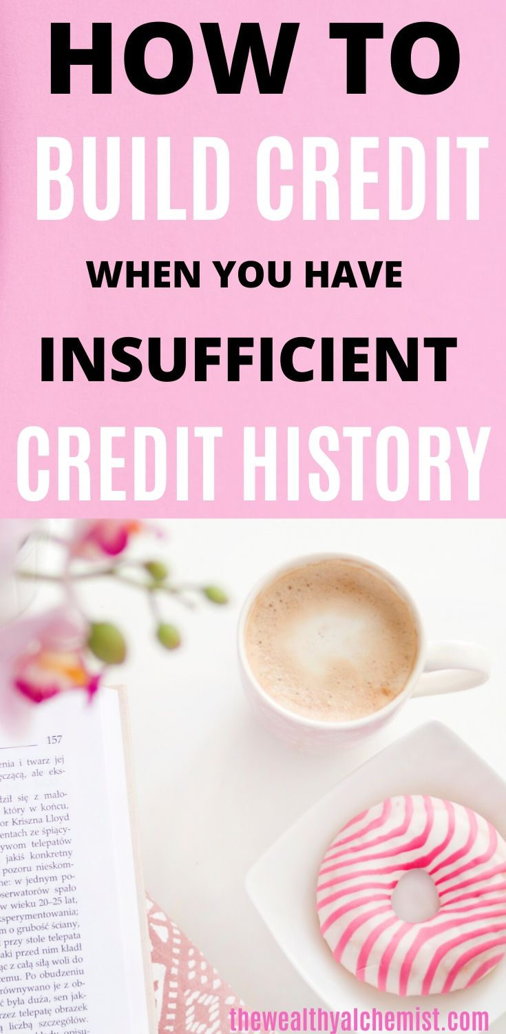 What To Do About Your Insufficient Credit History The Wealthy Alchemist Build Credit Credit History Credit Card Hacks