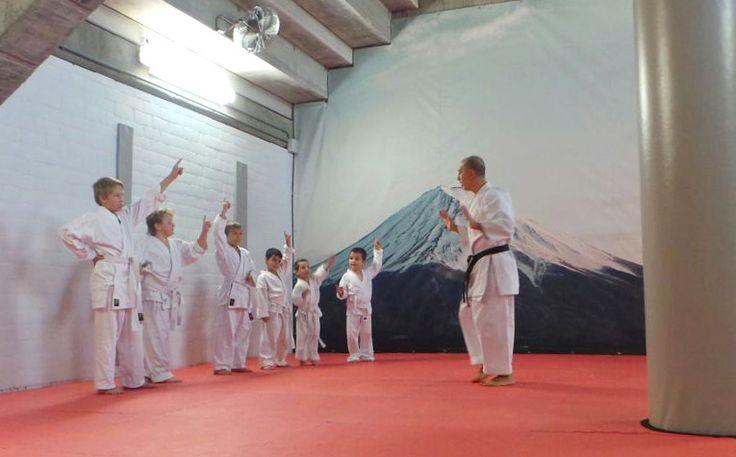 Beneficios del karate en niños pequeños - El Karate es una actividad ideal para los más pequeños de la casa. Es un deporte que los niños pueden realizar como si de cualquier otra actividad extraescolar se tratara. Es más, el karate es una actividad extraescolar ideal para los niños y para su desarrollo.