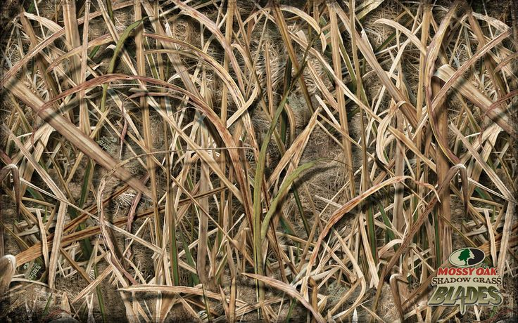 New Mossy Oak Shadow Grass Blades Camo Wallpaper 1440x900