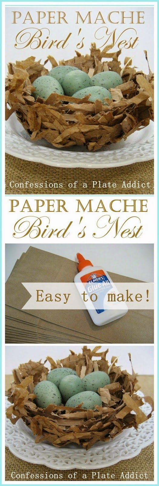 CONFESSIONS OF A PLATE ADDICT Easy and Inexpensive...Paper Mache Bird's Nests