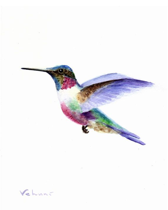 Colors - Hummingbird  Original Watercolor on Paper 10x8 by TrueImpressions, $19.00