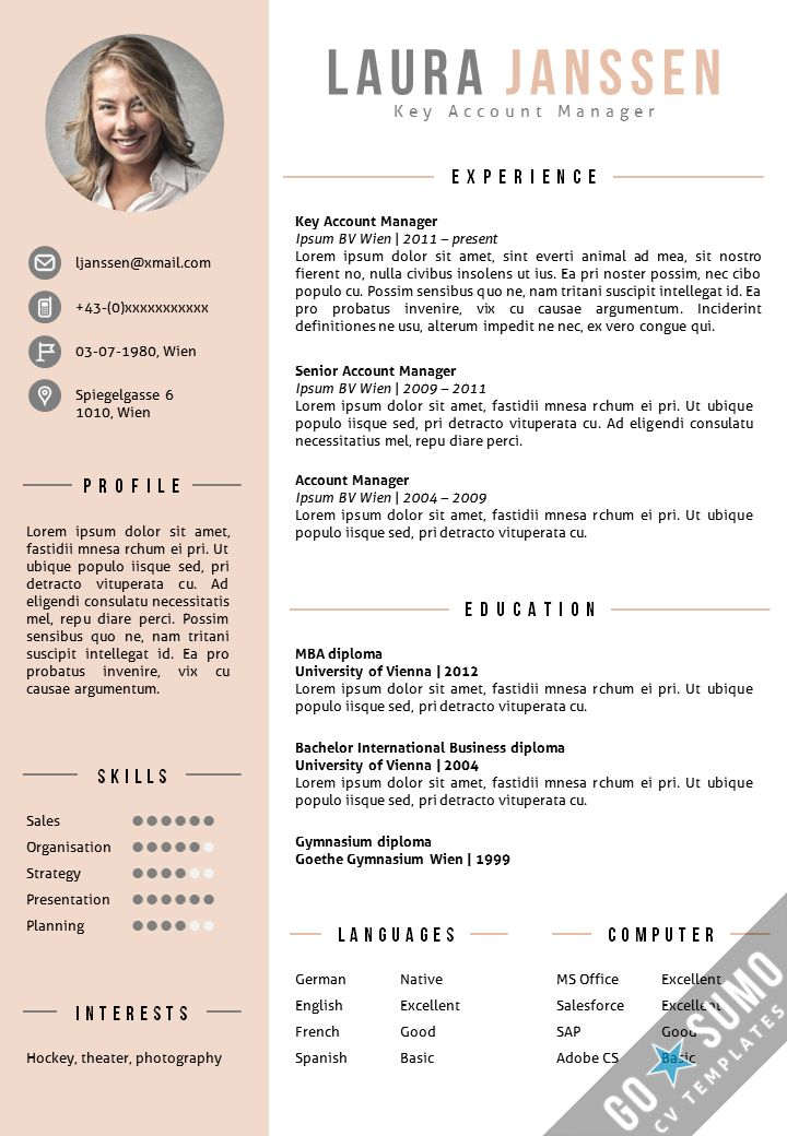 CV Template Vienna Purple  Sample Resume Layout