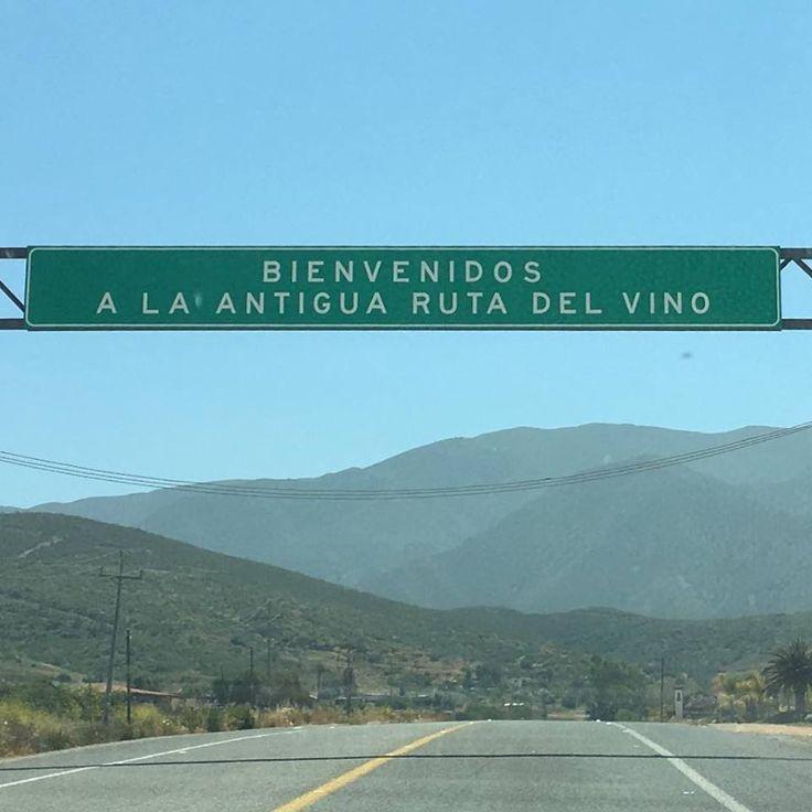 Bienvenidos a la antigua Ruta del Vino  #Ensenada #MiAlmaGemela #BajaCalifornia #Baja #DiscoverBaja #DescubreBC #México #BajaMexico  Aventura por blancaf619