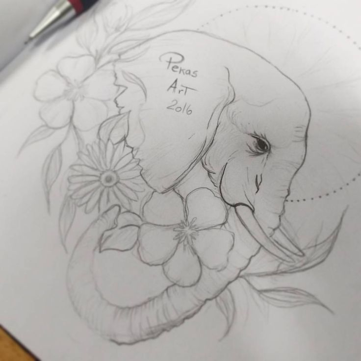 Bosquejo de mi primer elefante. @pekasart.