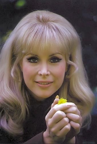 Barbara Eden - celebrity, beauty