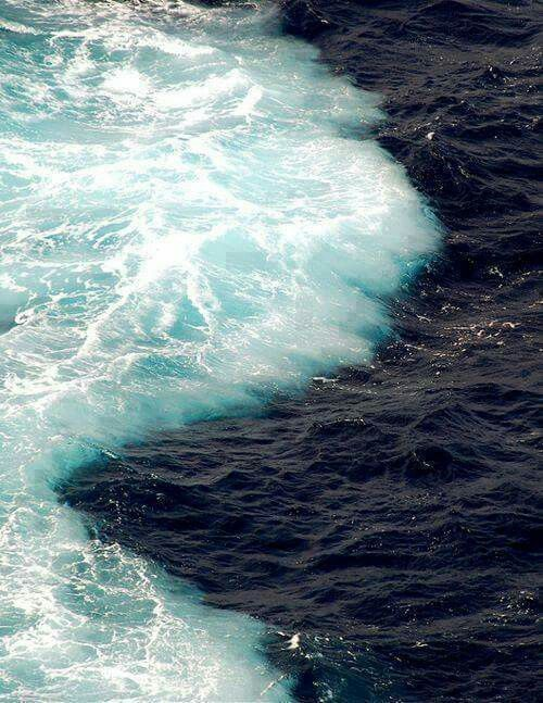 The Gulf of Alaska where two oceans meet, but do not mix! Amazing!