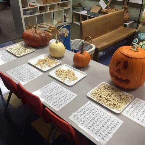 Inquiring Minds: Mrs. Myers' Kindergarten: Exploring Pumpkins