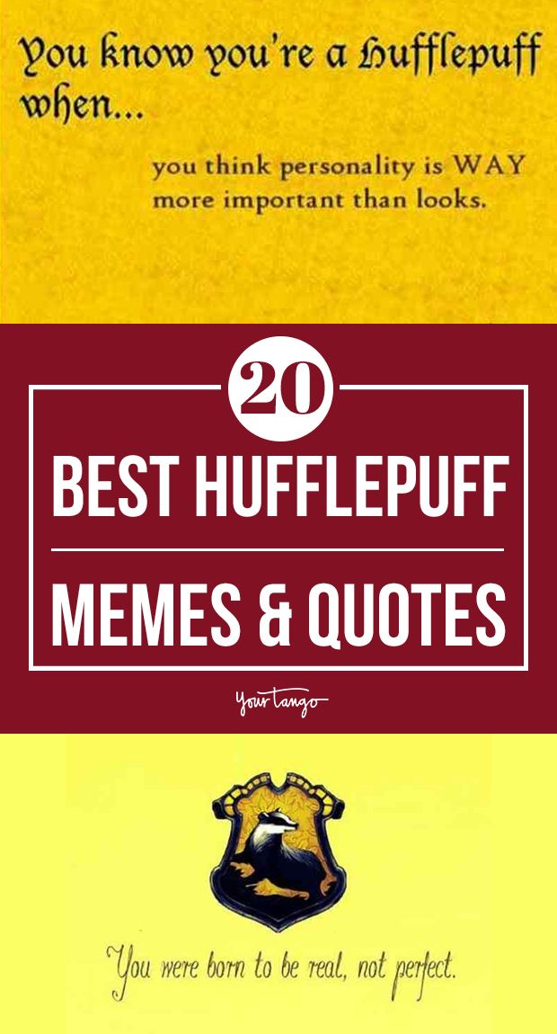 20 Funny Hufflepuff Memes Harry Potter Quotes To Celebrate Hufflepuff Pride Day Hufflepuff Hufflepuff Pride Harry Potter Quotes