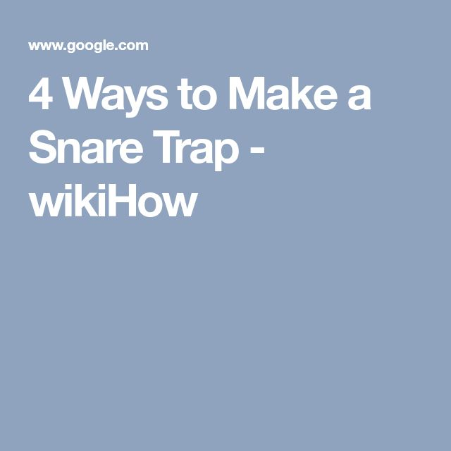 4 Ways to Make a Snare Trap - wikiHow