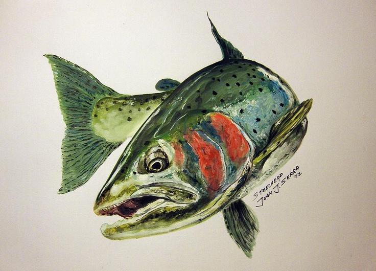 Steelhead dreams painting steelhead dreams fine art for Dreaming of fish