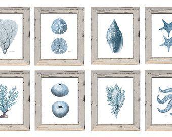 Set de 8 estampas de Sealife azul pálido. 2 corales 2 conchas 2 estrellas 2 erizos con descuento en papel acuarela.