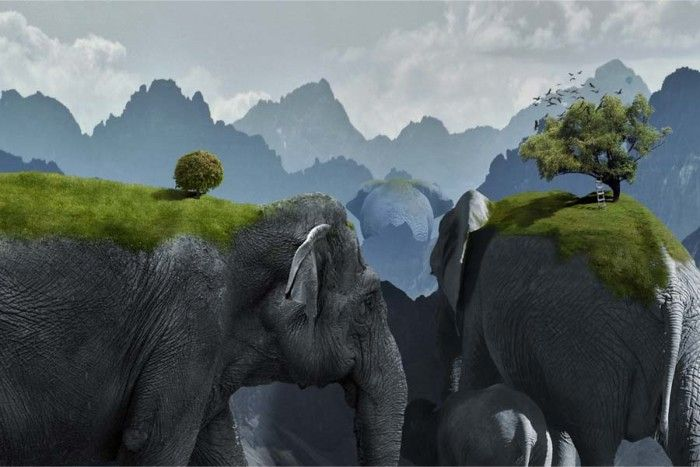 digital photography of giant elephant mountains with trees and grass by chris bennett