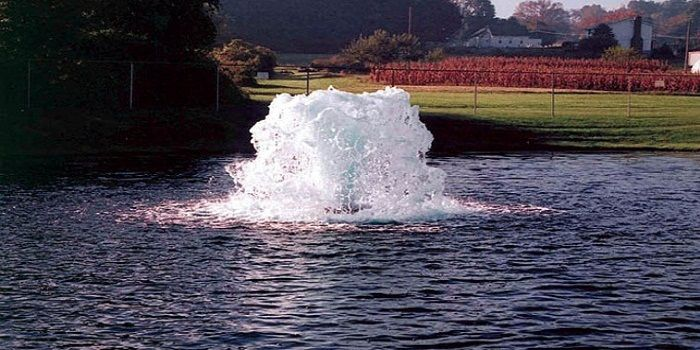Pond scum is a huge bummer for most pond owners. Green scum is caused my excess nutrients in the pond or water feature. Utilizing and aeration system is the best way remedy.