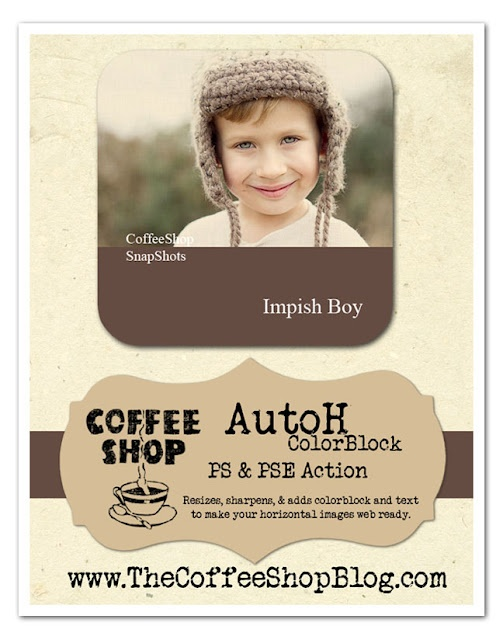 CoffeeShop AutoH ColorBlock Web Action