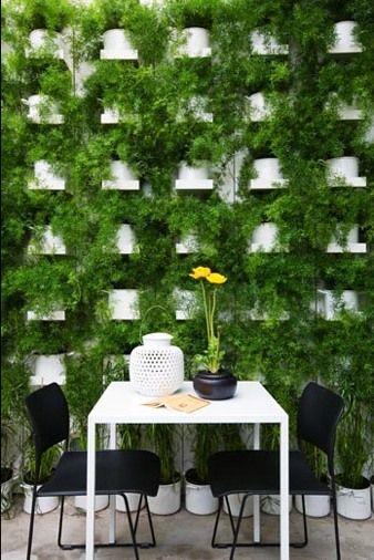 decorar sustentável: Muro verde/jardim vertical e caldo verde