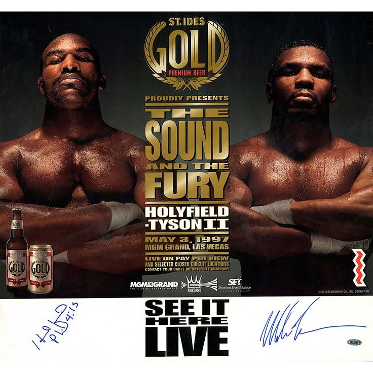 """Steiner Sports Evander Holyfield and Mike Tyson Fight Rematch 21"""" x 22"""" Autographed Poster, Multicolor"""