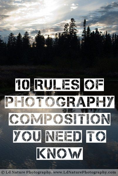 Brush up on your composition skills with the 10 Rules of Photography Composition. Which one is your favorite?