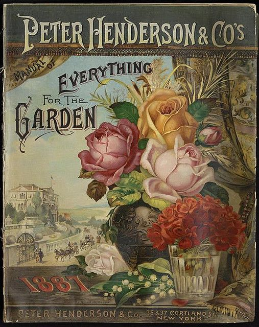 1880s victorian roses. Everything for your Garden, Peter Henderson  Co's. vintage trade card