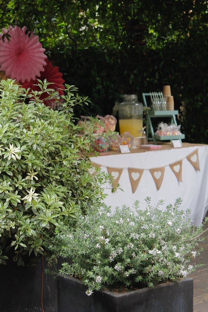 230 best images about fiestas primera comuni n on for Decoracion bautizo en jardin