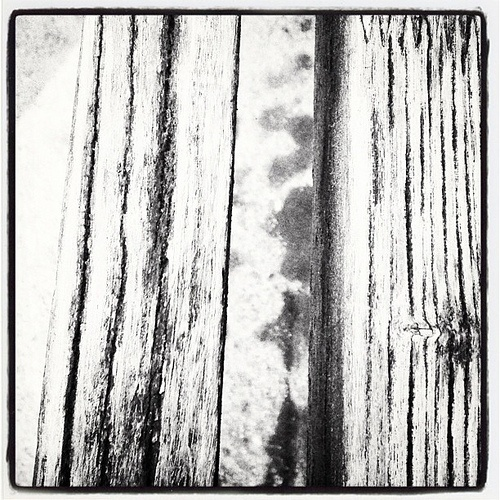 Black and white wood structure