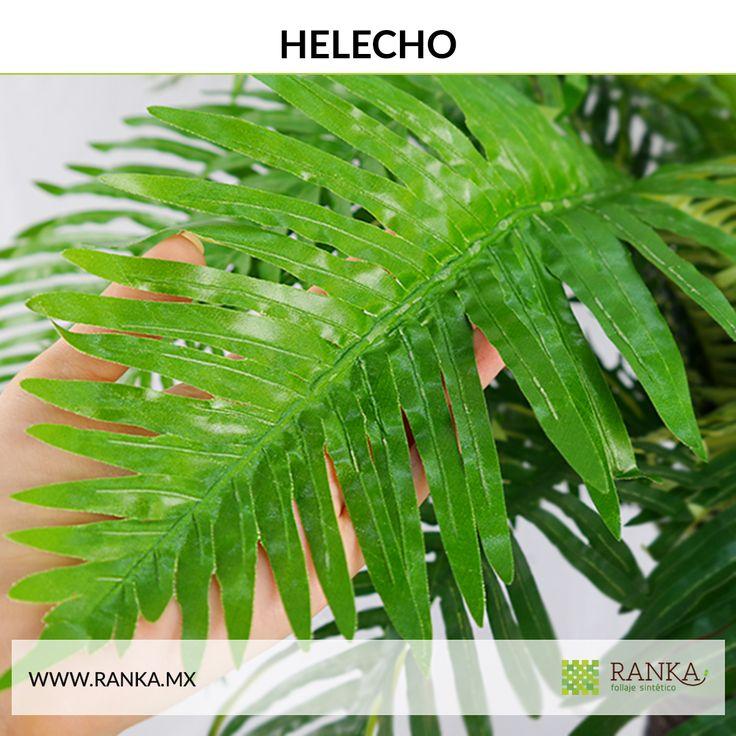 14 best plantas artificiales images on pinterest plantas for Plantas decorativas artificiales df