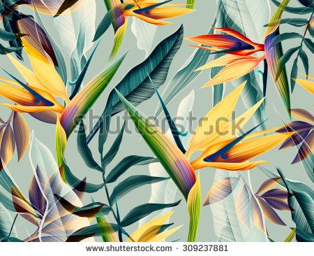 Tropical Print Stock Photos, Images, & Pictures | Shutterstock