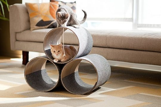 DIY cat scratcher/toy (cardboard concrete form cut to size with carpet glued on). | Hollywood Tonight