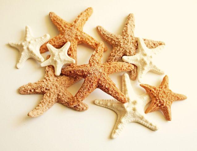 #DannyandKara #NauticalWedding #Starfish #HarvestQueen2008Style