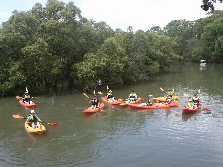 Redlands Kayak Tours http://bit.ly/1n5taw5  #Brisbane #Queensland #Australia #travel