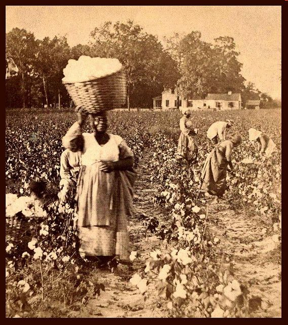 Slaves, ex-slaves, children of slaves in the American South, 1860 -1900 (19) by…