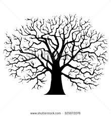 Image result for drawing of a tree without leaves