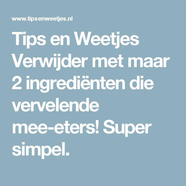 Tips en Weetjes Verwijder met maar 2 ingrediënten die vervelende mee-eters! Super simpel.