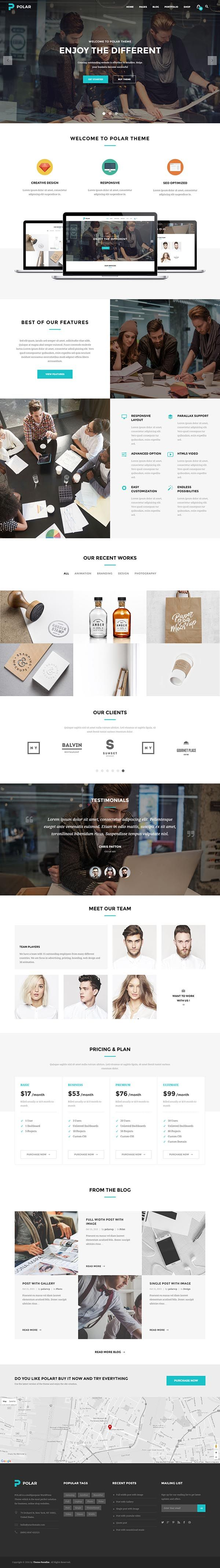 Polar-WordPress-Theme-Screen-Short