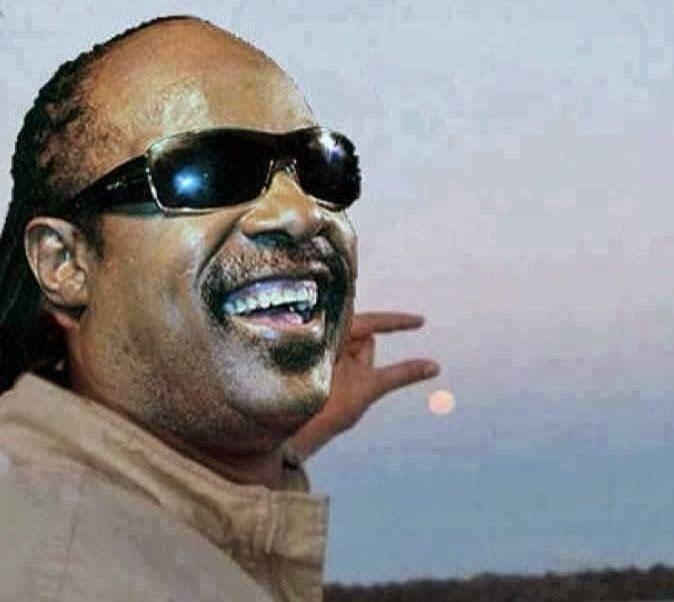 Funny Stevie Wonder Moon