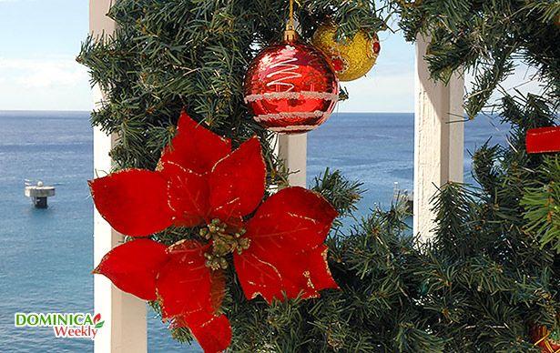 10 Best Caribbean Centerpieces Images On Pinterest: 1000+ Images About Caribbean Christmas On Pinterest