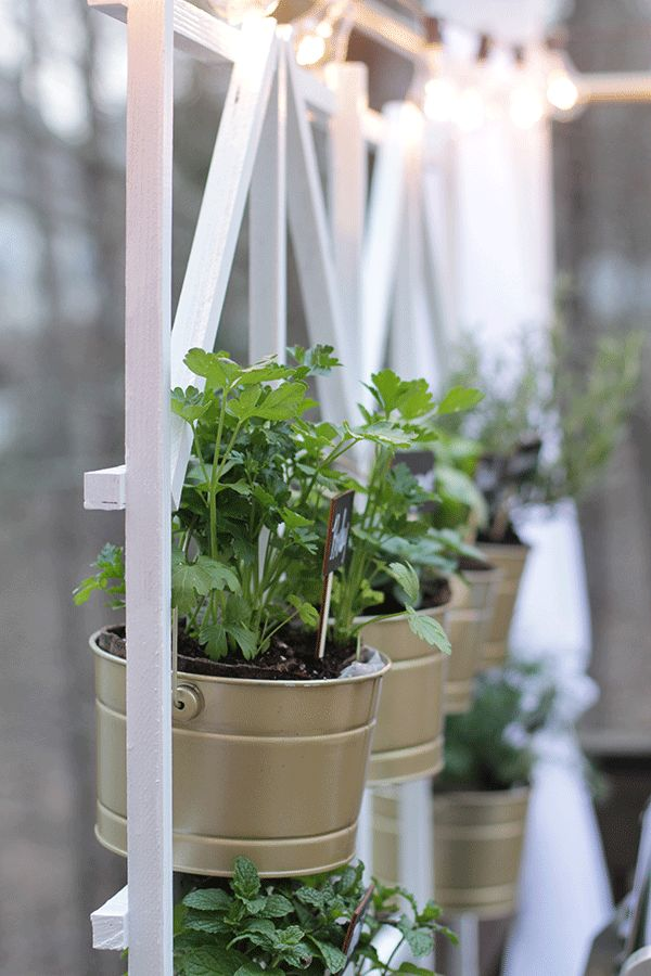 Vertical Herb Garden Design: Backyard Deck Ideas With Dining Set And Window Boxes