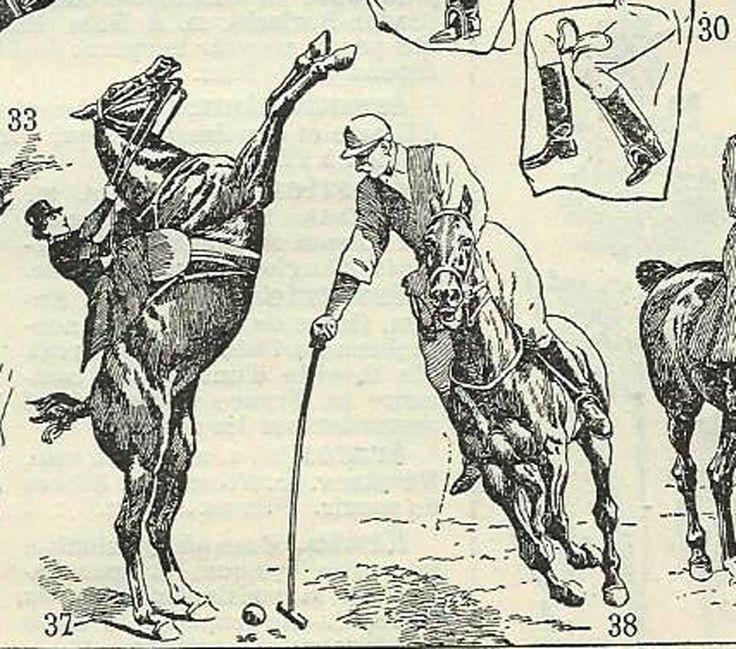 1930 Equitation, illustration originale Larousse sport chevaux cheval poney scrapbooking décor vintage entre-deux-guerres de la boutique sofrenchvintage sur Etsy