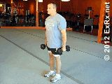 Biceps - Hammer Curls (do these seated)