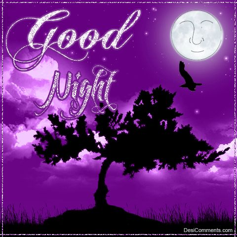 Image result for good night lavender