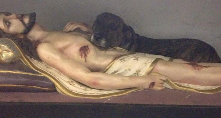 Perro duerme brazos figura Jesús