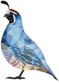 Resultado de imagen para quail logo